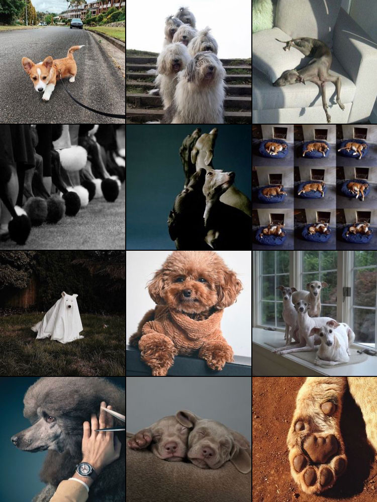 Dogue Magazine Instagram Feed 2