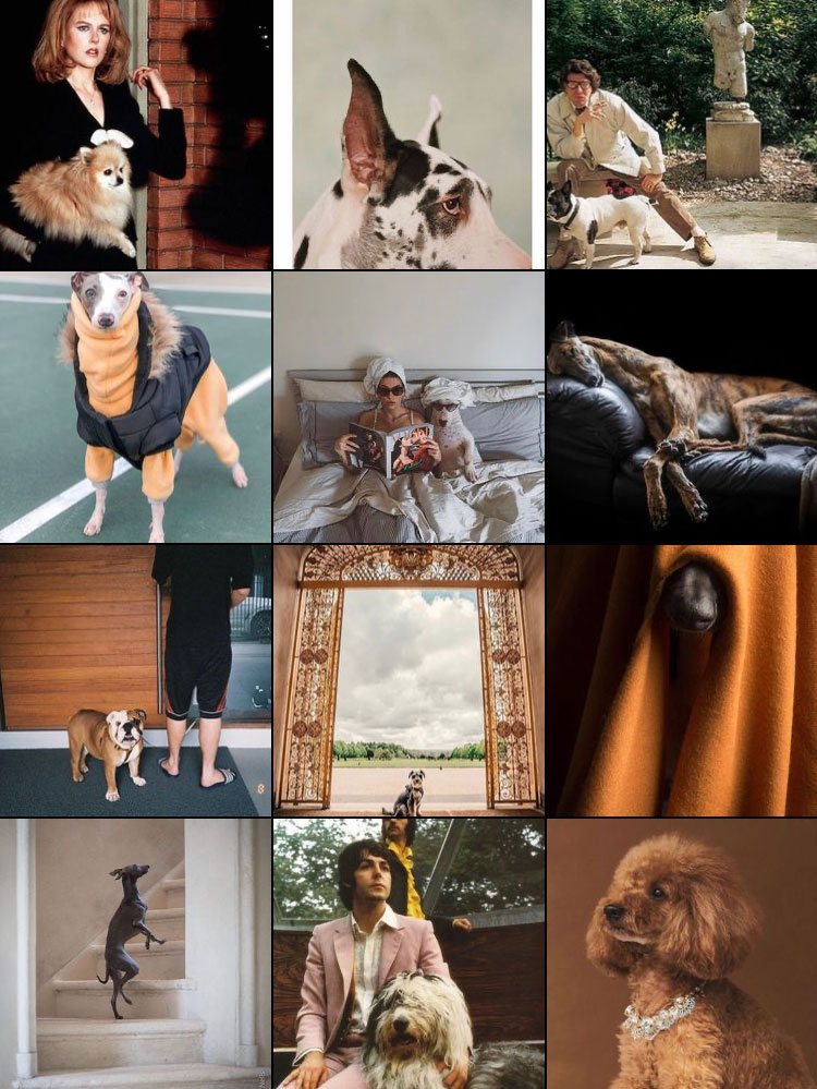 Dogue Magazine Instagram Feed 4